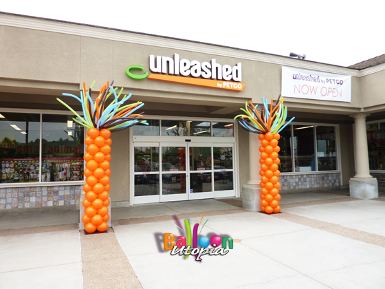Wild Columns for Petco Unleashed