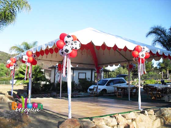 Western themed canopy decor